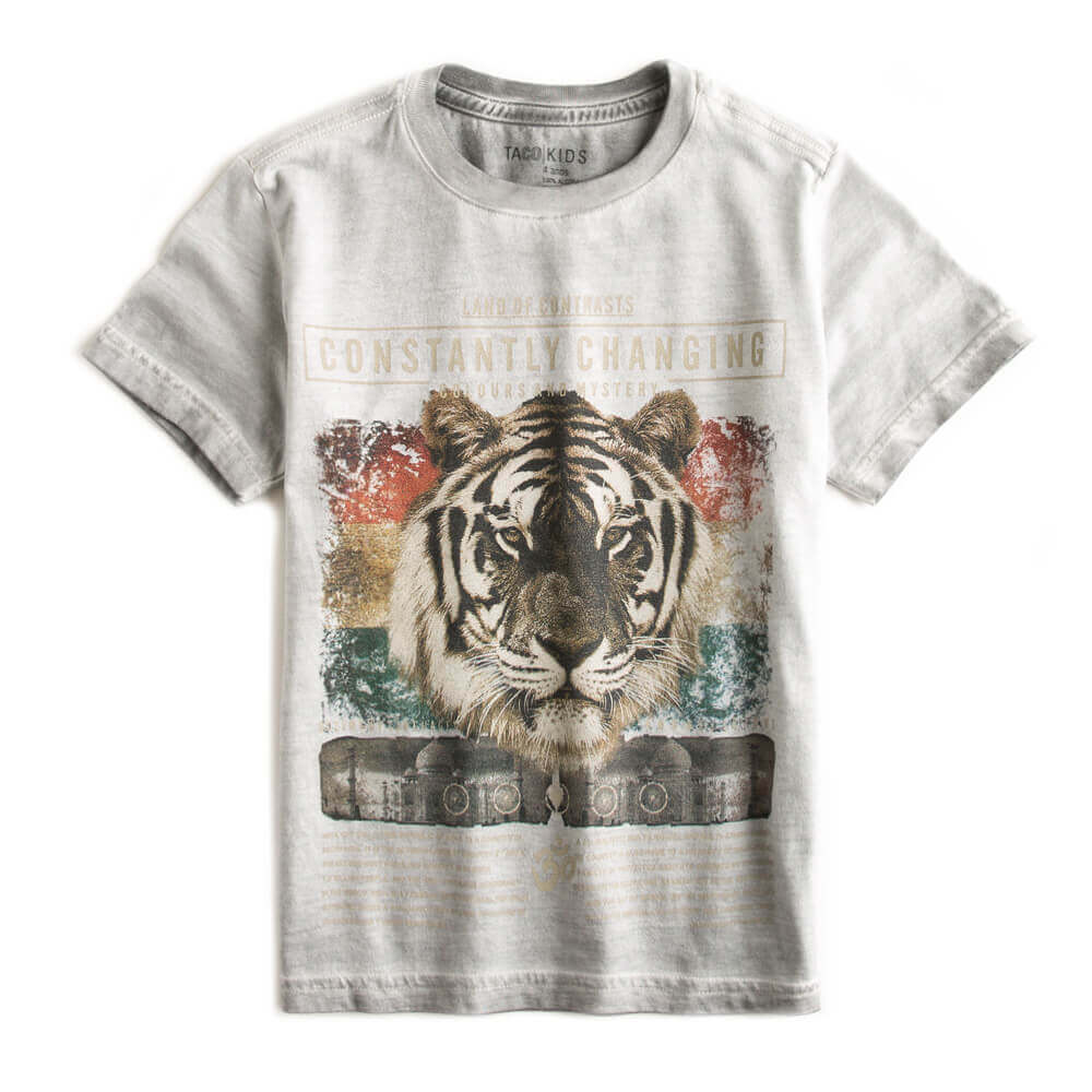 T-shirt-Estampada-Cinza-Infantil-Masculino