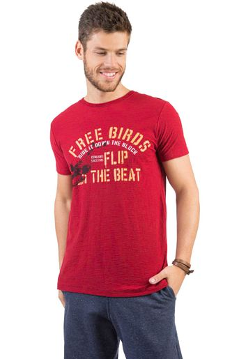 17411_C035_1-T-SHIRT-ESTAMPADA-FLAME