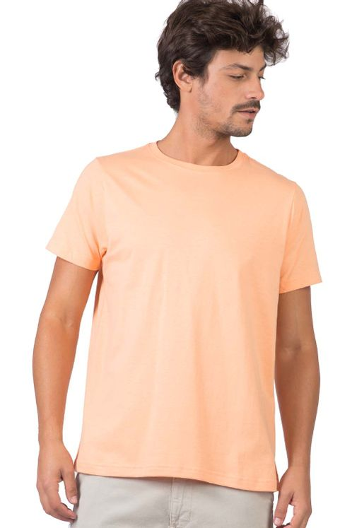18932_C039_1-T-SHIRT-BASICA-FIT-COLOR