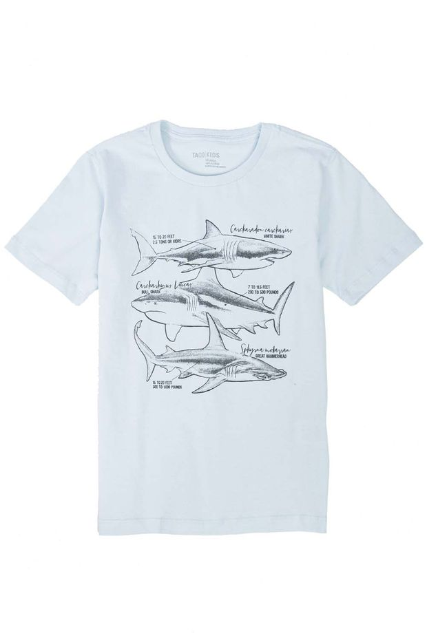 19397_C014_1-T-SHIRT-ESTAMPADA-SHARK