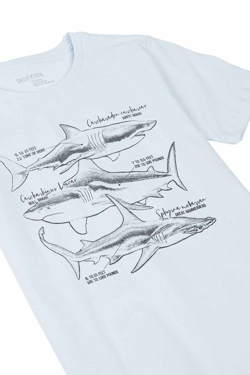 19397_C014_2-T-SHIRT-ESTAMPADA-SHARK