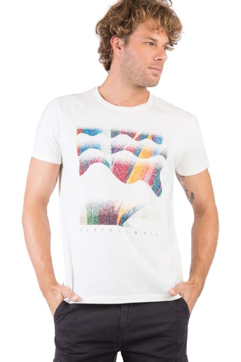 19704_C027_1-T-SHIRT-ESTAMPADA-PERFECT-WAVE